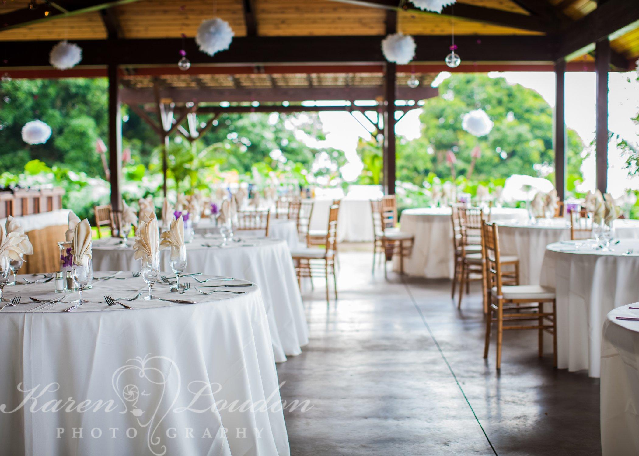 Holualoa reception