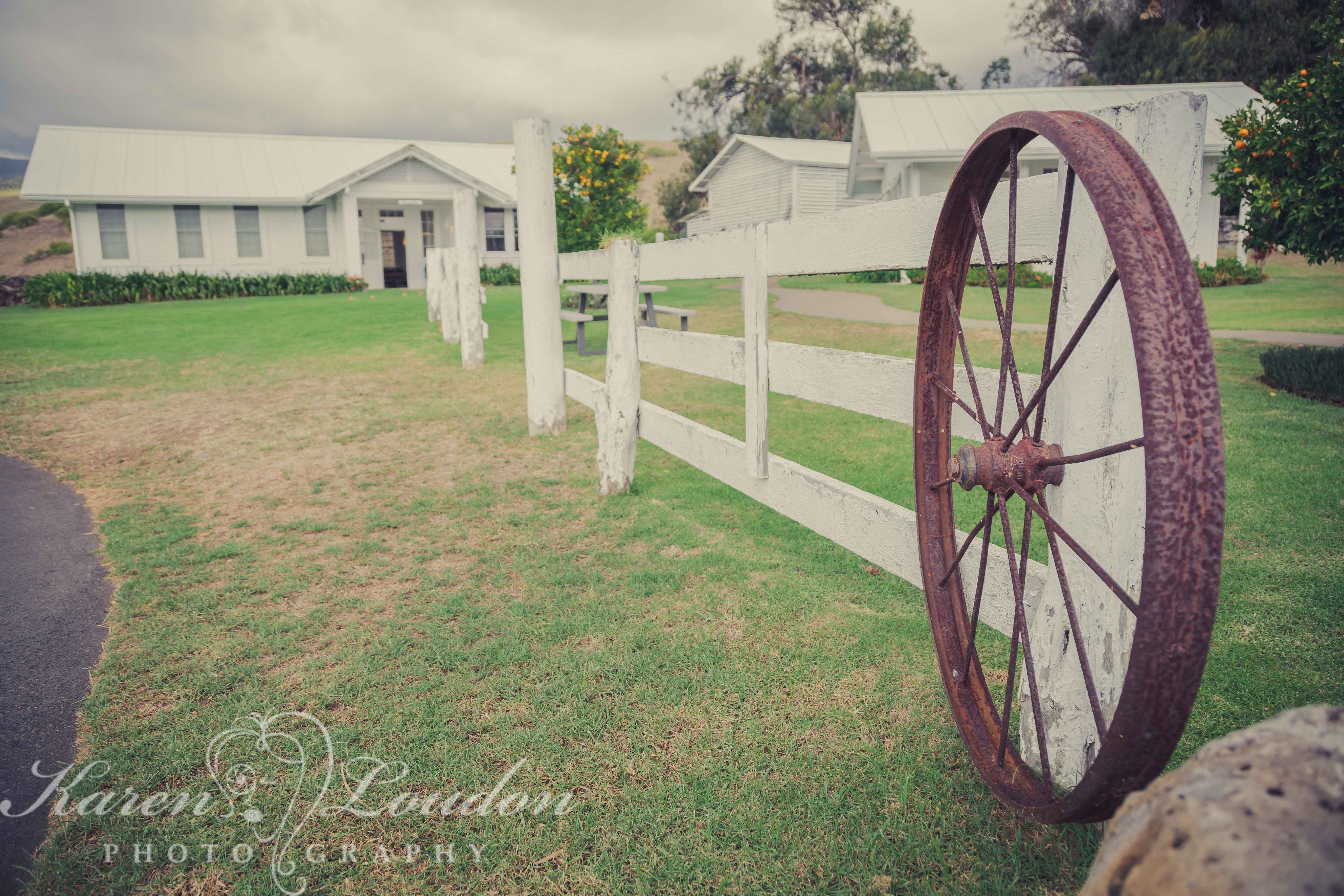 Anna Ranch, Wedding, Photography, Big Island, Hawaii