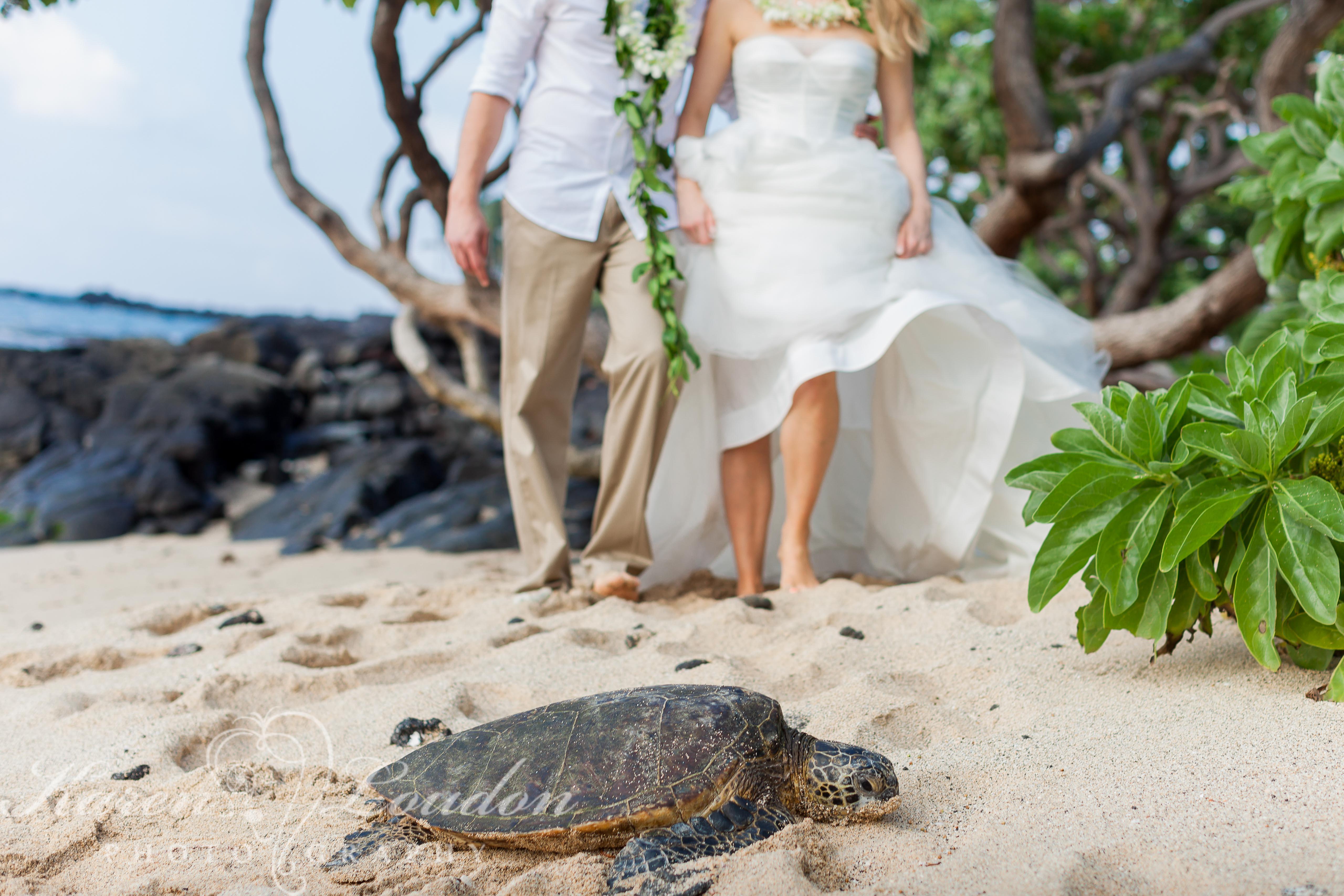 Kukio Beach Big Island Hawaii Wedding
