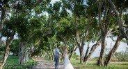 Puakea Ranch, Wedding, Hawi, Rustic, Wedding, Hawaii, Big Island, Eco Ranch, Photography